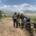 Ondersteboven van Afrika groepsfoto